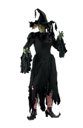 Adult Womens Deluxe Witch Halloween Costume Size Small