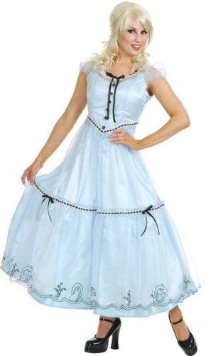 Alice in Wonderland Adult Costume (Small)