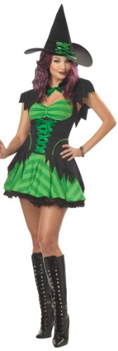 California-Costumes-Womens-Hocus-Pocus-Costume-BlackGreen-Small-0-0