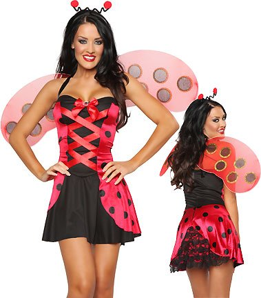 3 Pc Lovely Ladybug (Red/Black;X-Large)