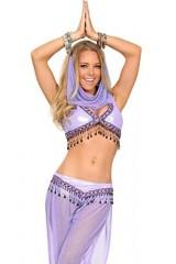 3WISHES-Arabian-Nights-Costume-Sexy-Genie-Halloween-Costumes-for-Women-0