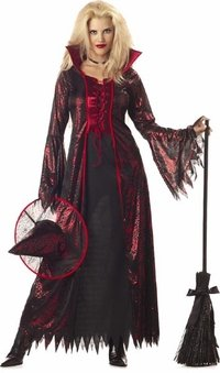 Adult Devil Witch Costume