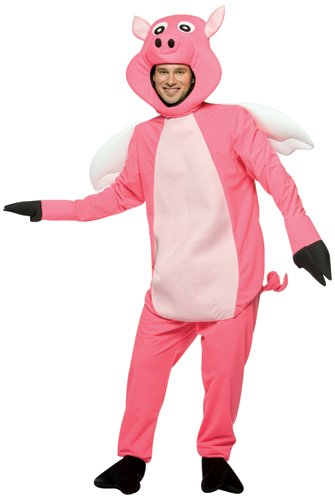 Adult Flying Pig Costume Standard – One Size