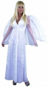 Adult-Long-Angel-Dress-Costume-SzX-large-14-16-0