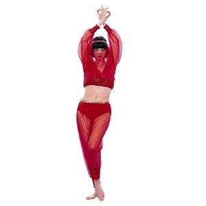 Arabian Royal Dancer – Red Sequin Costume