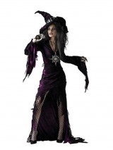 Disguise-Unisex-Adult-Sorceress-Purple-Large-12-14-Costume-0