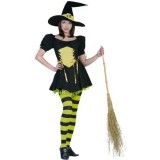 The-Emerald-Witch-Costume-X-Small-Dress-Size-2-4-0-1